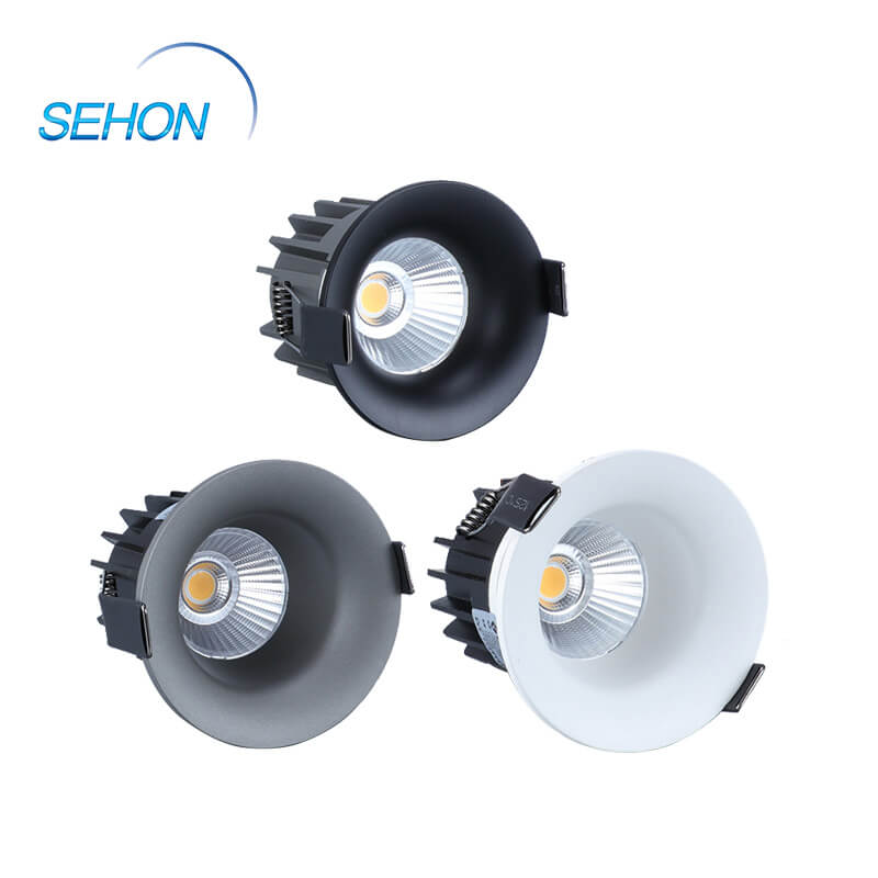 Sehon Latest down lights price for business for hotel lighting-1