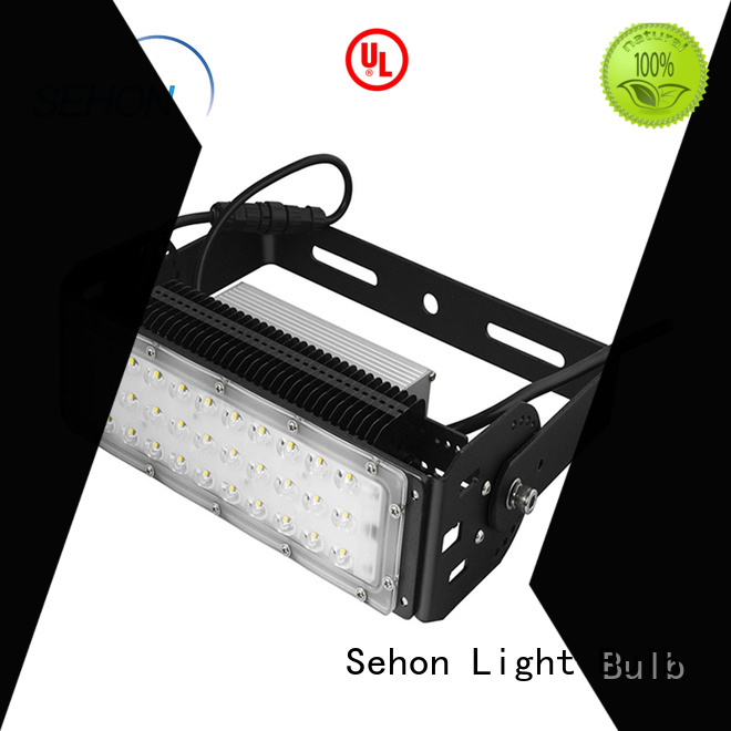 Sehon Wholesale led security spotlight factory used in signage and indicative lighting