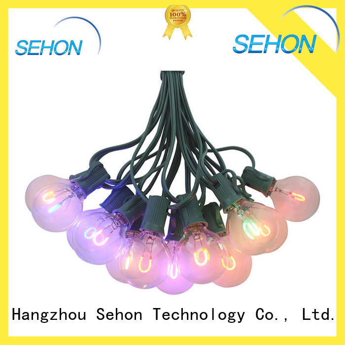 Sehon New outdoor christmas rope lights company used on Christmas