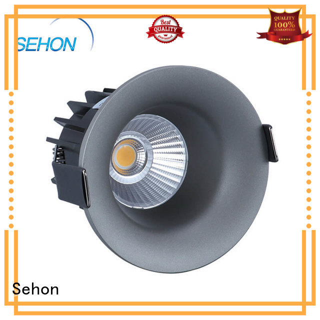 Sehon low profile recessed downlights Suppliers for hotel lighting