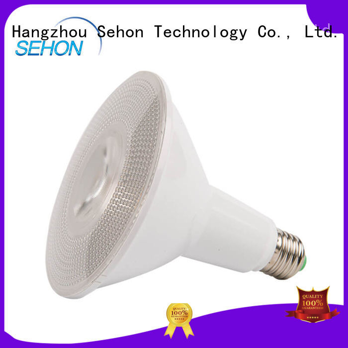 Sehon led ceiling spots for business used in hotels lighting