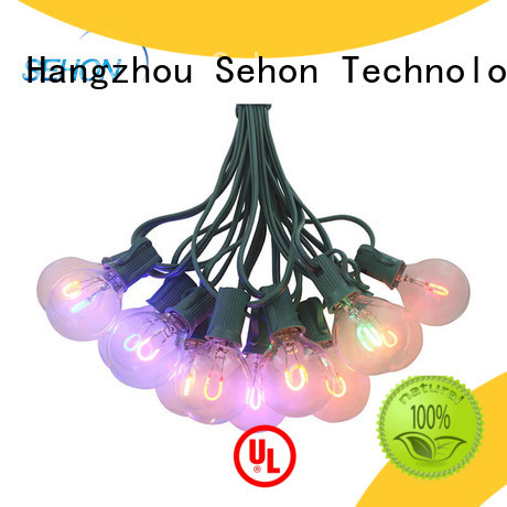Sehon New 100 led string lights Supply used on Christmas