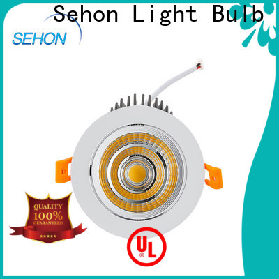 New dimmable halogen downlights for business for home lighting