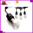 High-quality commercial led rope lights Suppliers used on holidays