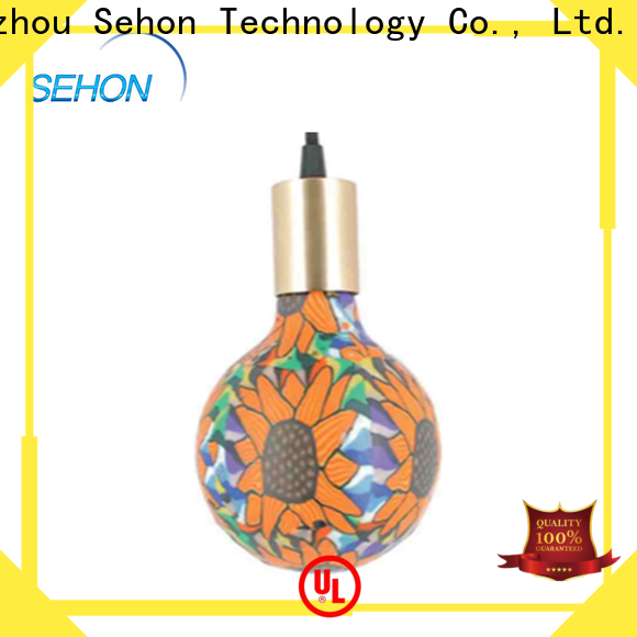 Sehon led that looks like incandescent manufacturers for home decoration
