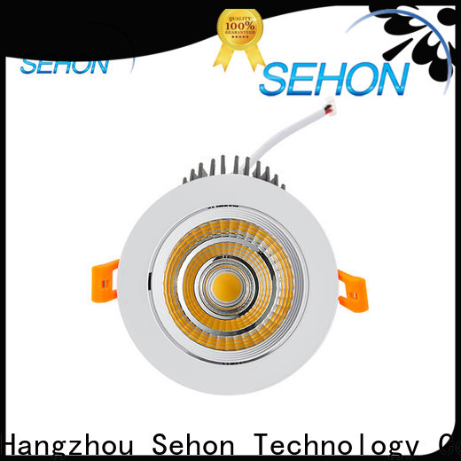 Sehon large downlights factory for hotel lighting
