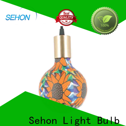 Sehon Top retro led filament bulb Supply used in bathrooms