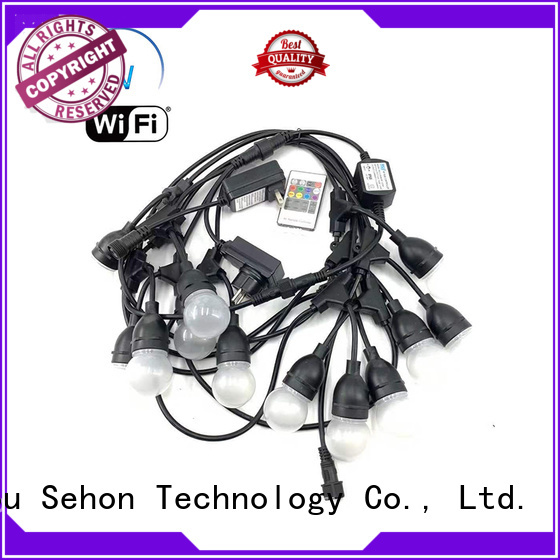 Sehon Top flexible rope light Supply used on holidays
