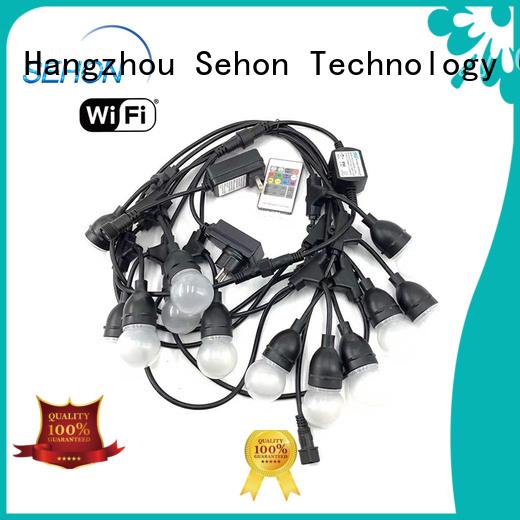 Custom temporary string lights company used on holidays